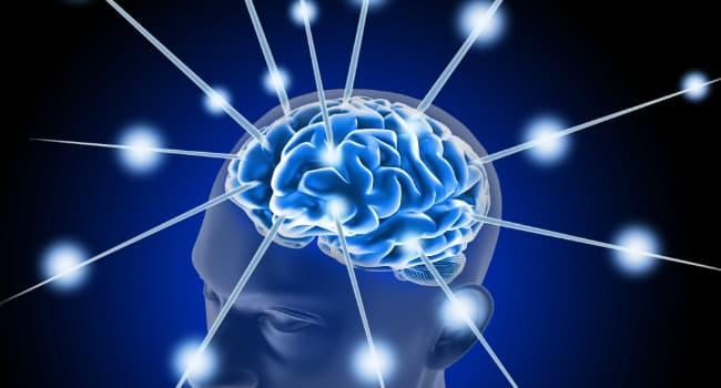Nouvelle Découverte : Voici Ce Qui Se Passe Dans Votre Cerveau Lorsque Vous Dormez